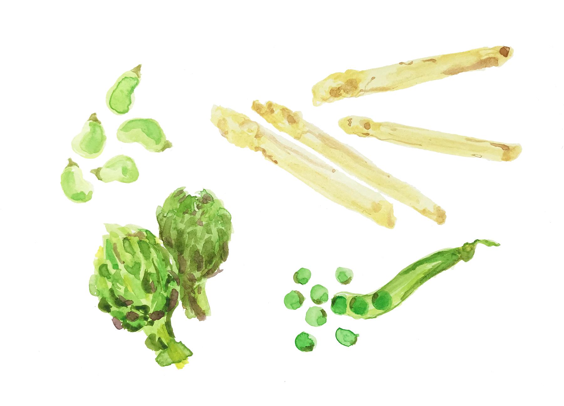 Vegetable spring stew Azagra